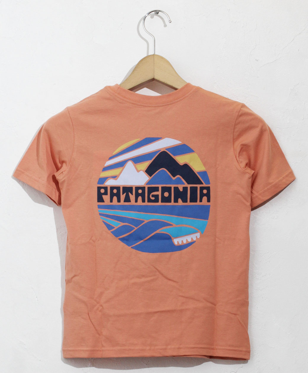 patagonia BOYS GRAPHIC ORGANIC T-SHIRT(FRME)